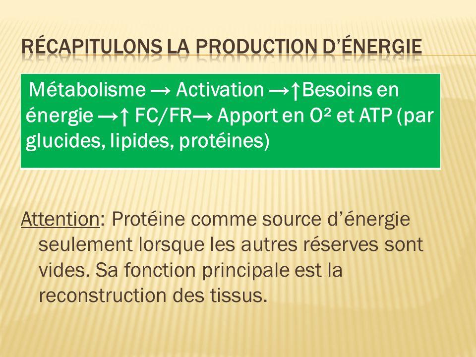 Récapitulons la production d'énergie