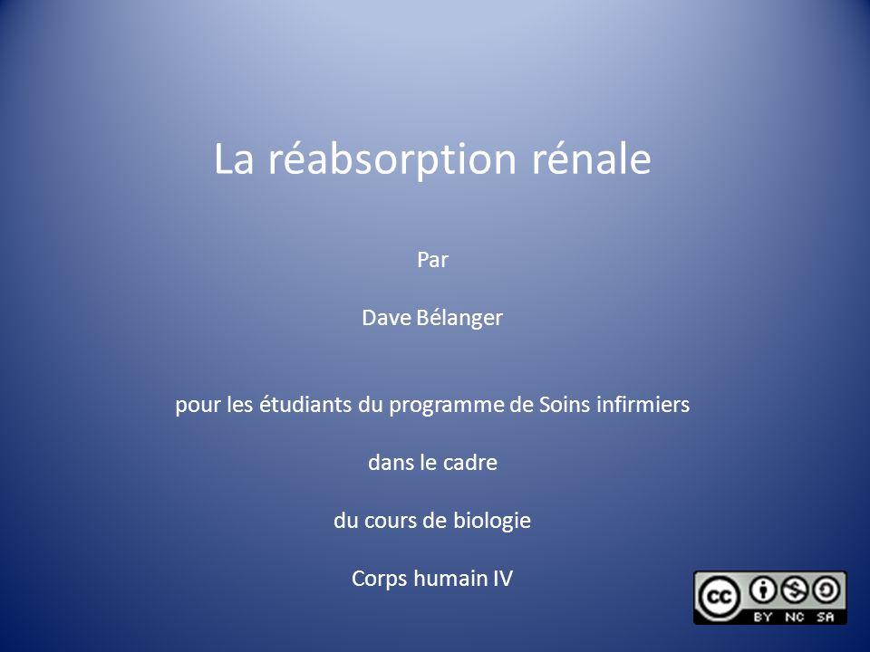 La réabsorption rénale Par Dave Bélanger pour les étudiants du programme de Soins infirmiers dans le cadre du cours de biologie Corps humain IV