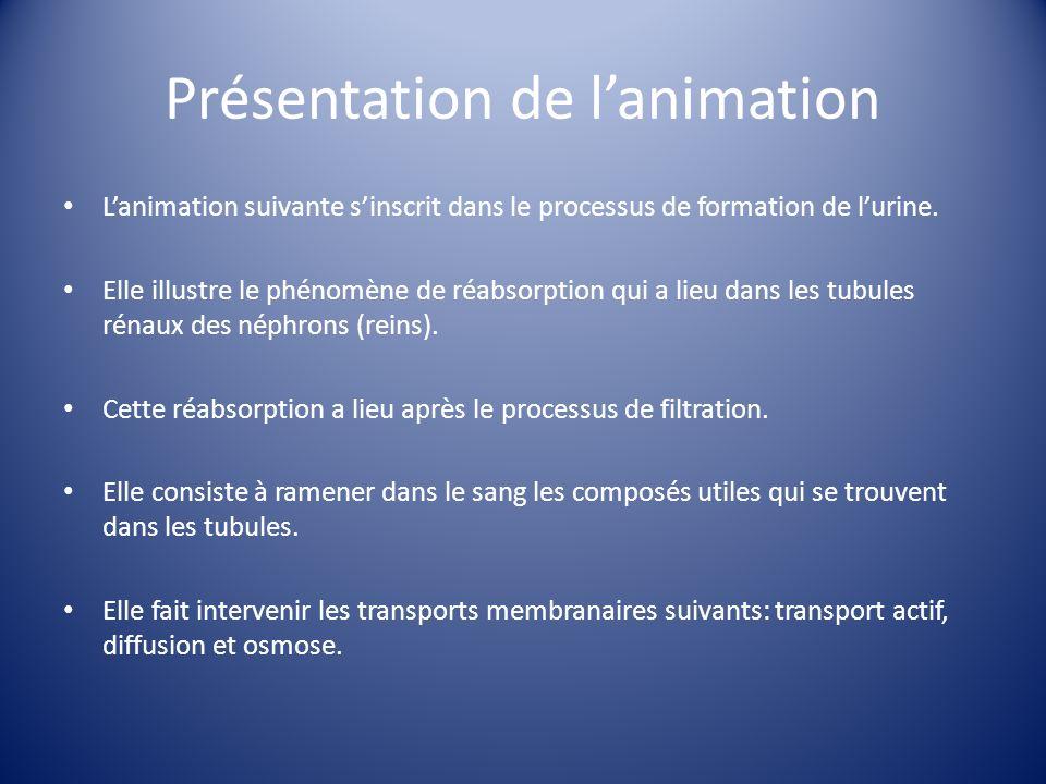 Présentation de l'animation
