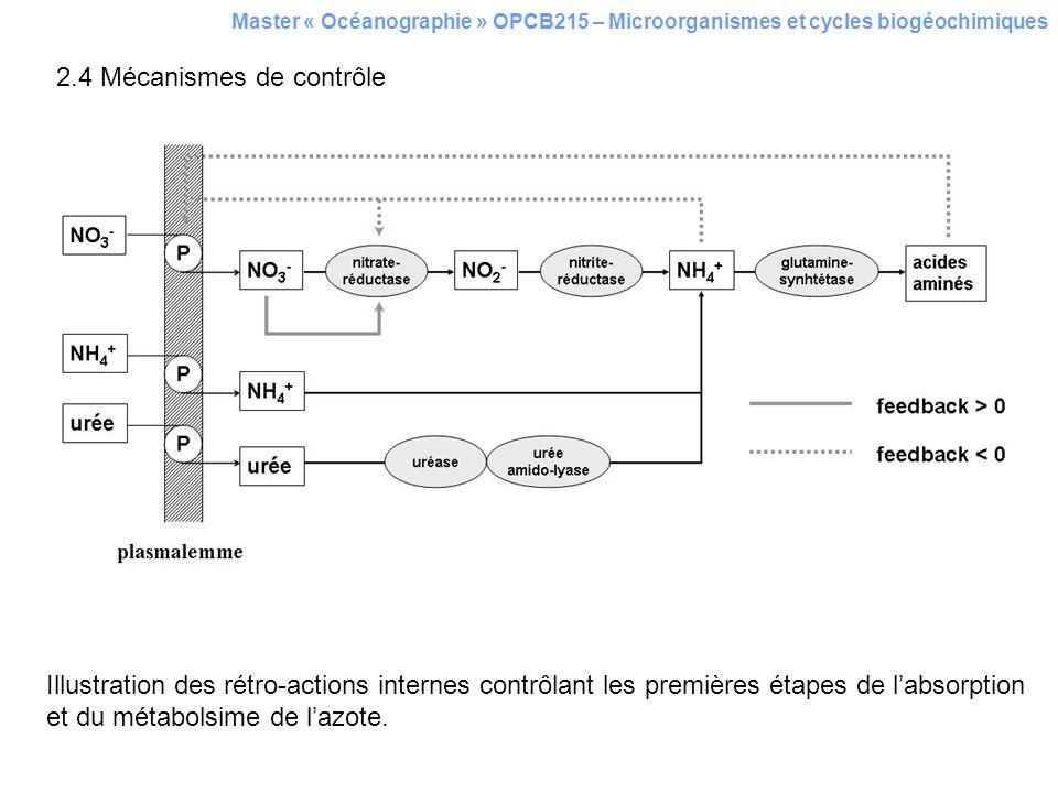 2.4 Mécanismes de contrôle