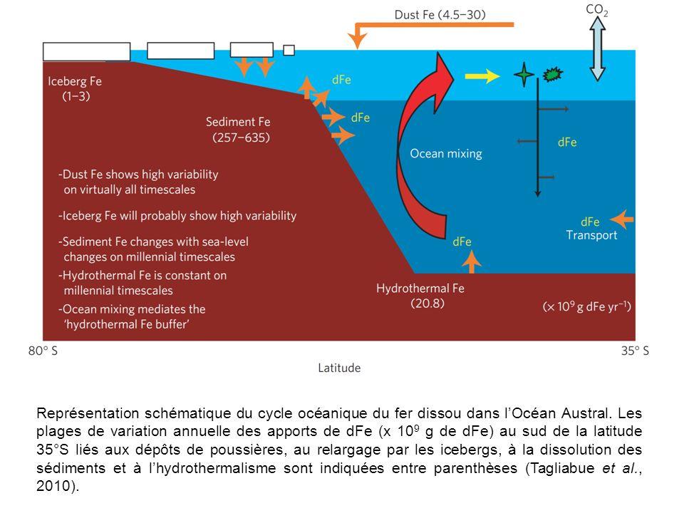 Représentation schématique du cycle océanique du fer dissou dans l'Océan Austral.