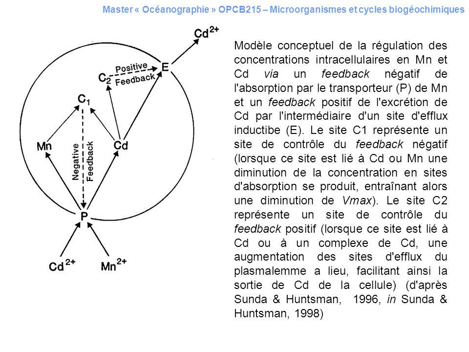 Master « Océanographie » OPCB215 – Microorganismes et cycles biogéochimiques