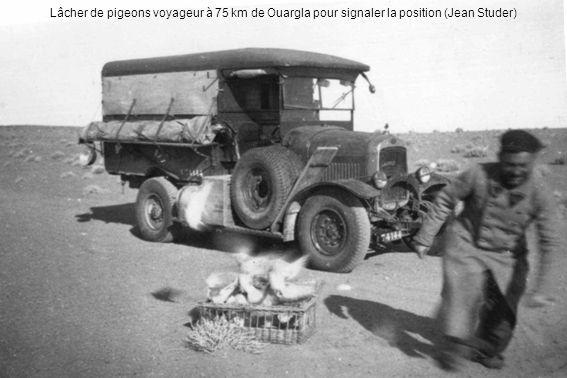 Lâcher de pigeons voyageur à 75 km de Ouargla pour signaler la position (Jean Studer)