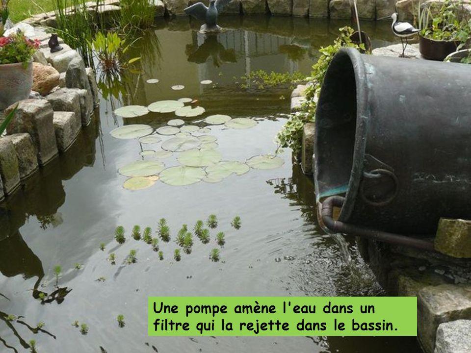 Une pompe amène l eau dans un filtre qui la rejette dans le bassin.