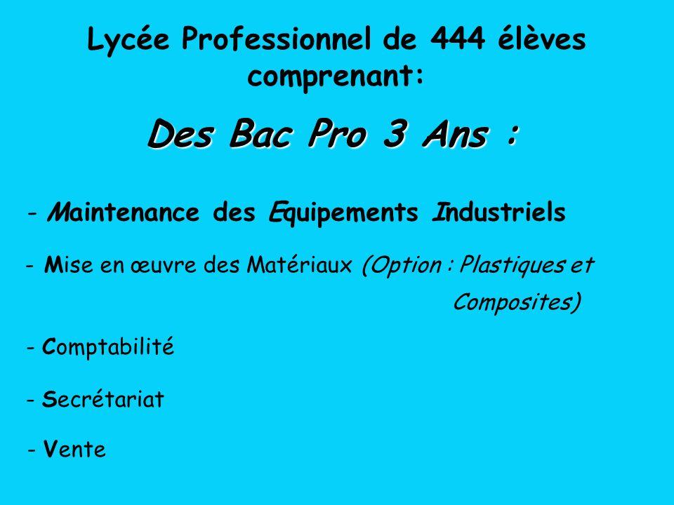 Lycée Professionnel de 444 élèves comprenant:
