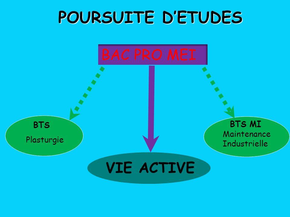 POURSUITE D'ETUDES BAC PRO MEI VIE ACTIVE BTS