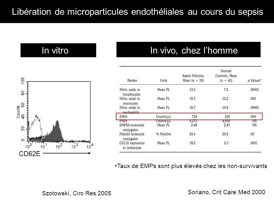Libération de microparticules endothéliales au cours du sepsis