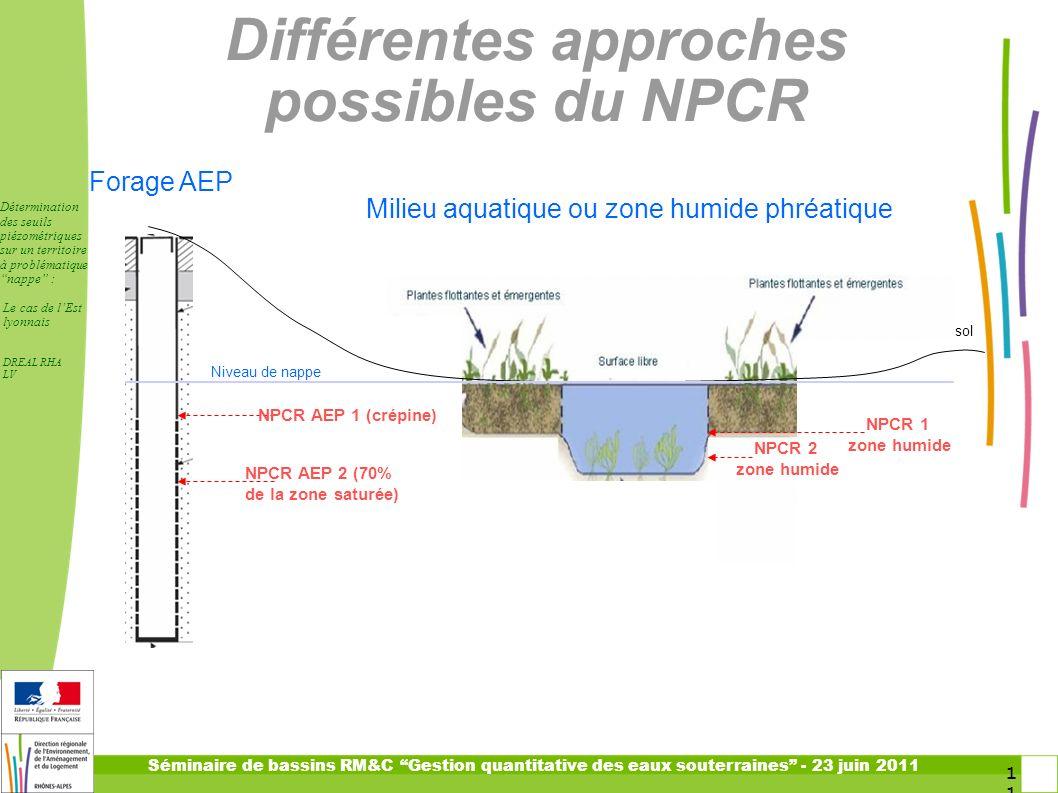 Différentes approches possibles du NPCR