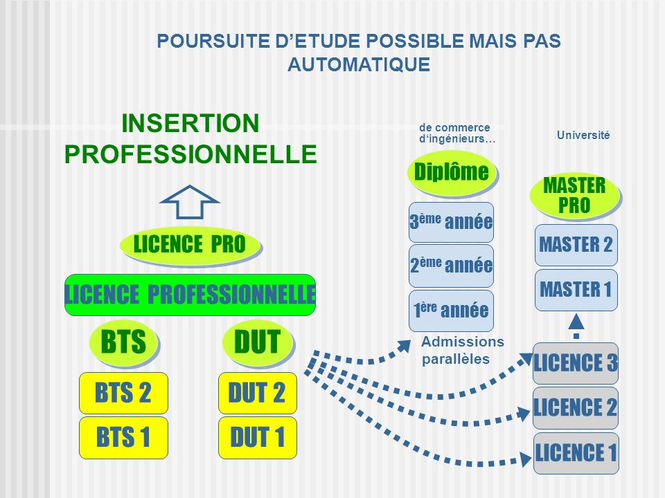 BTS DUT INSERTION PROFESSIONNELLE BTS 2 DUT 2 BTS 1 DUT 1