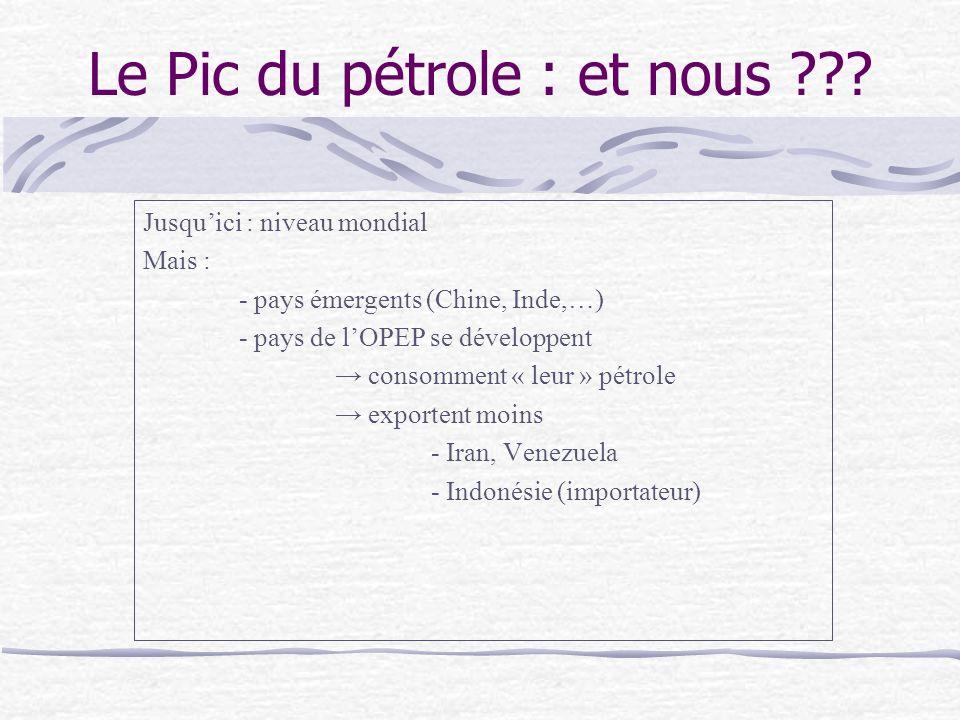 Le Pic du pétrole : et nous