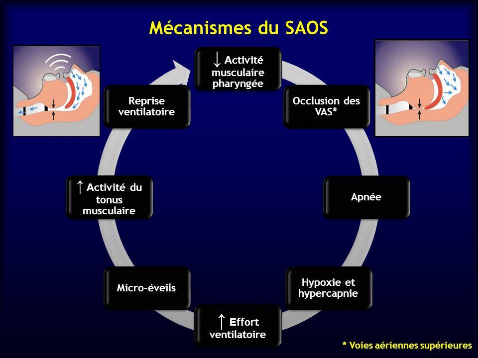 ↓ Activité musculaire pharyngée ↑ Effort ventilatoire