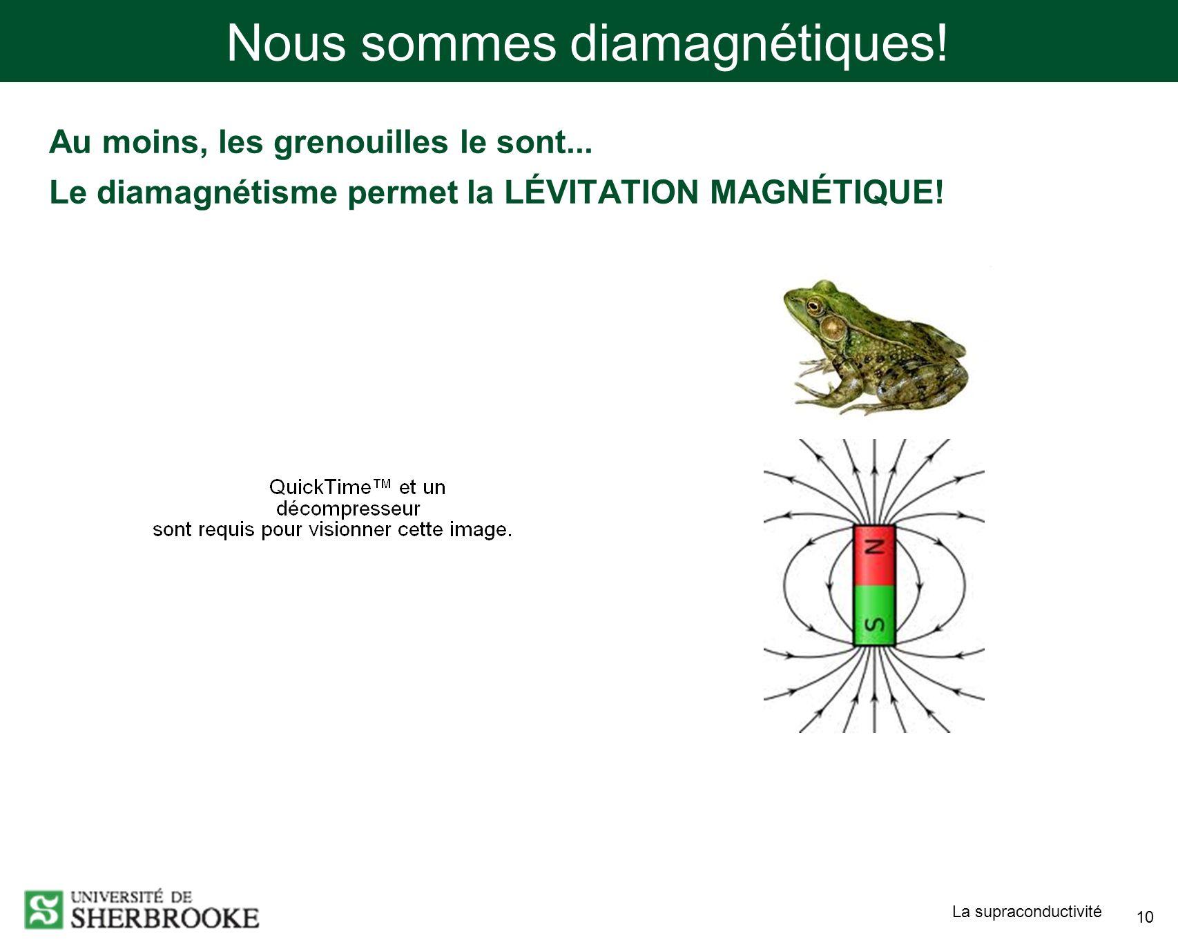 Nous sommes diamagnétiques!