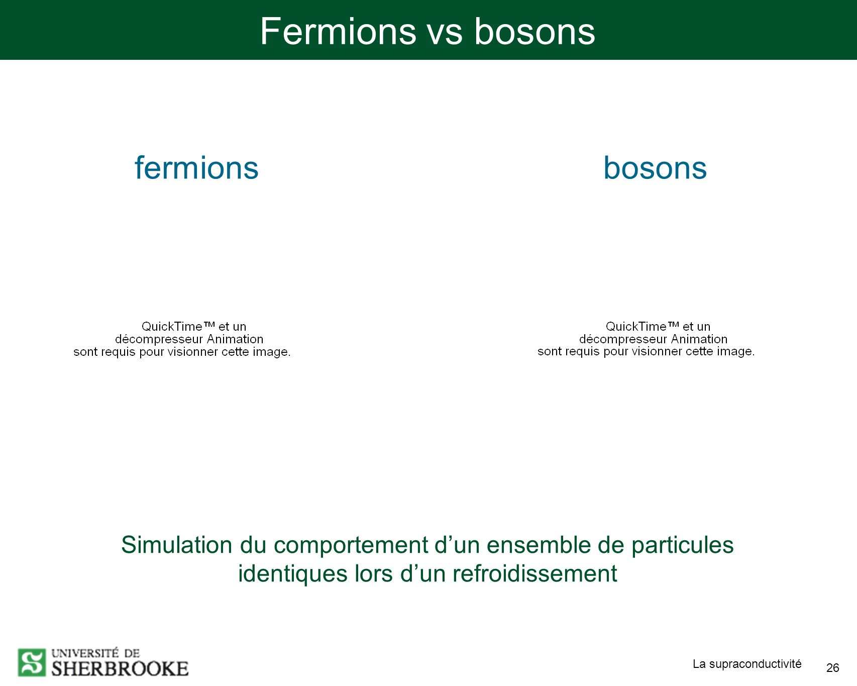 Fermions vs bosons fermions bosons