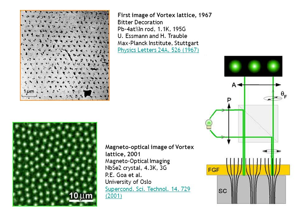 First image of Vortex lattice, 1967 Bitter Decoration Pb-4at%In rod, 1