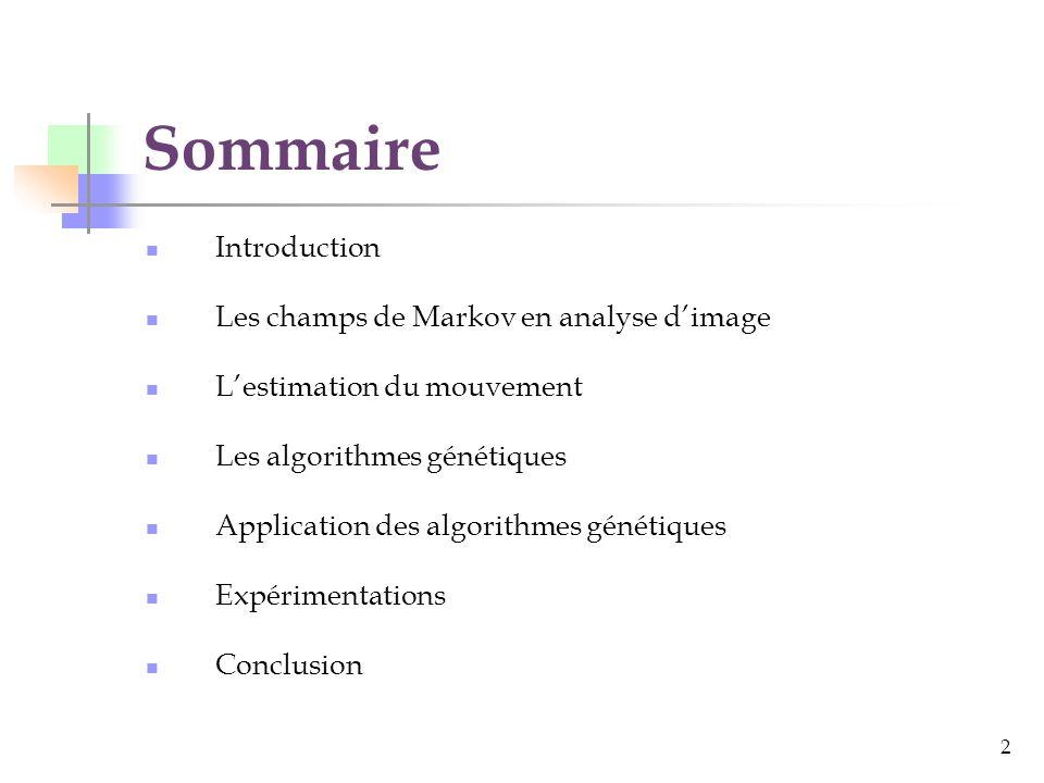Sommaire Introduction Les champs de Markov en analyse d'image