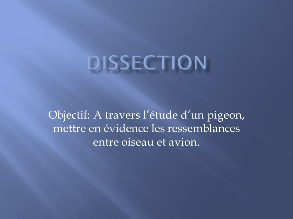 Dissection Objectif: A travers l'étude d'un pigeon, mettre en évidence les ressemblances entre oiseau et avion.