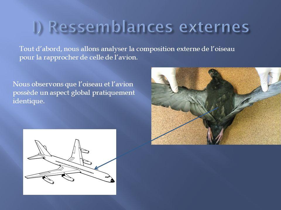 I) Ressemblances externes