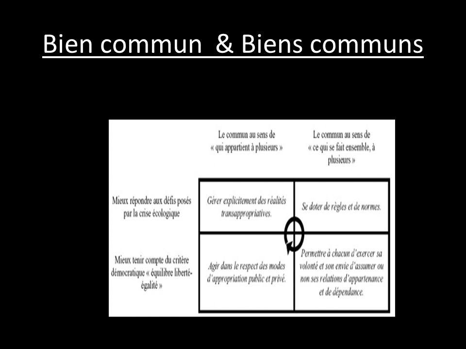 Bien commun & Biens communs