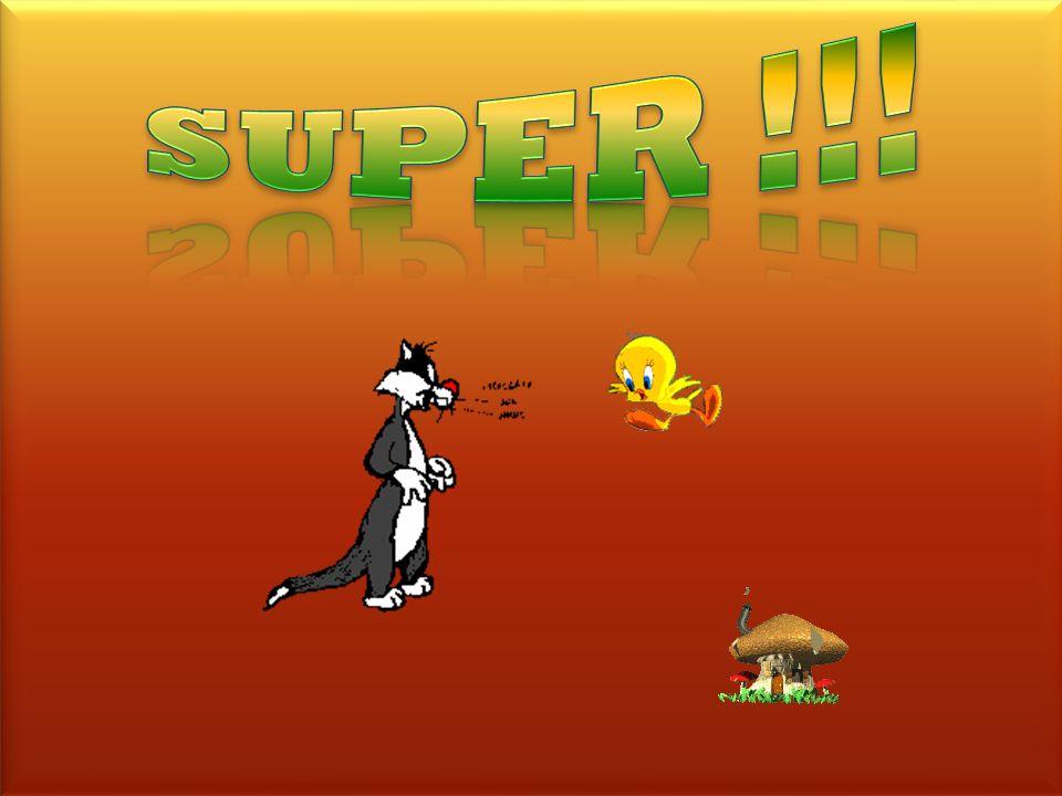 SUPER !!! bravo