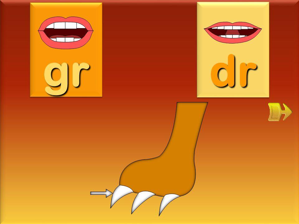 gr dr griffe