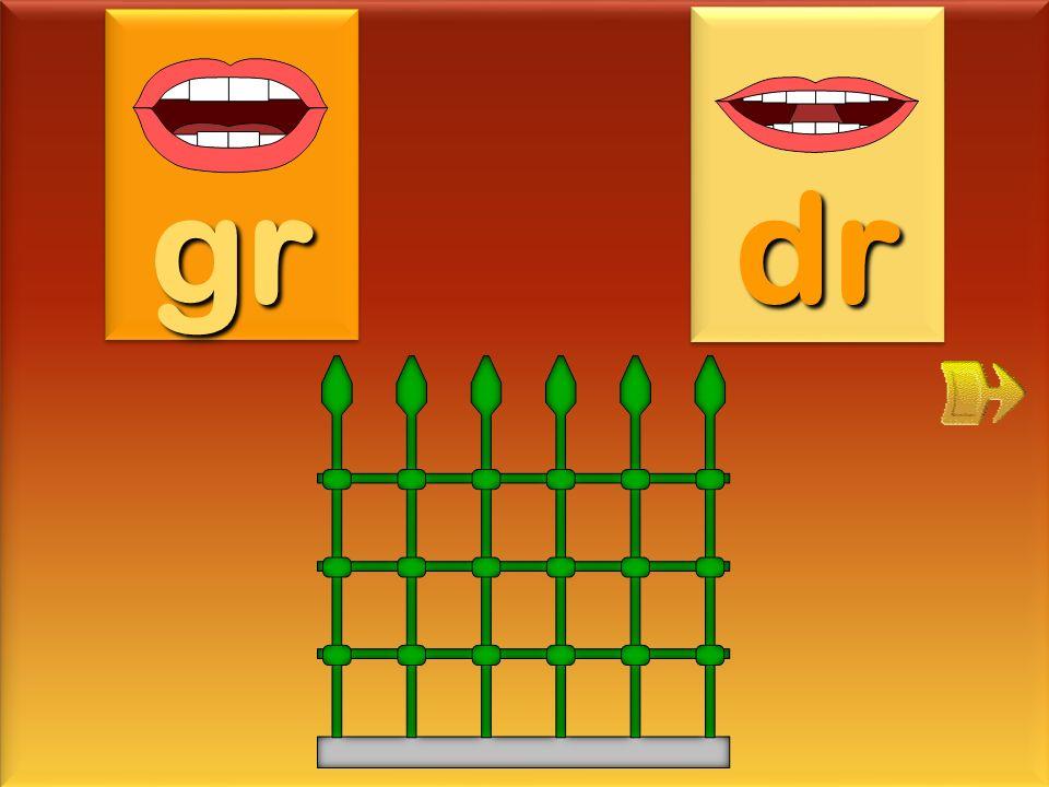 gr dr grille