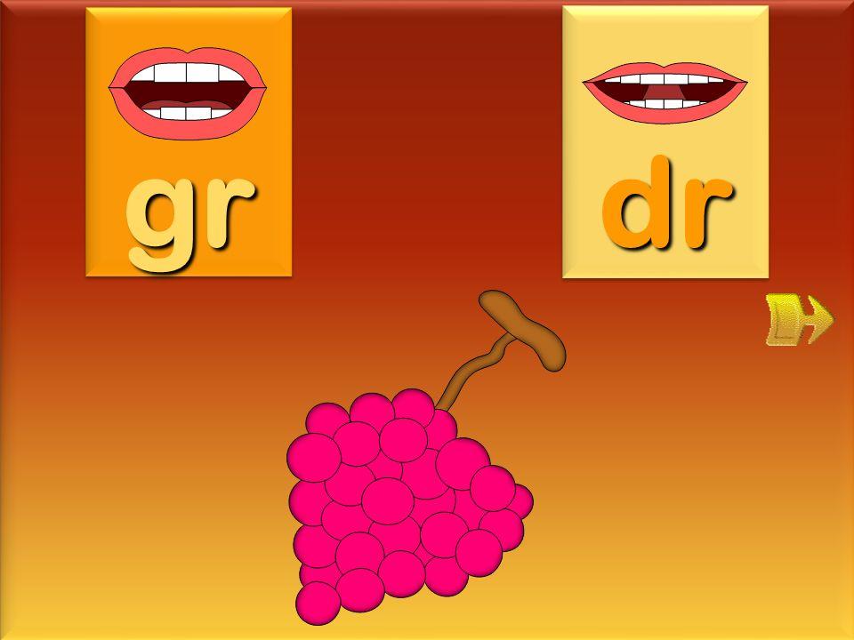 gr dr grappe