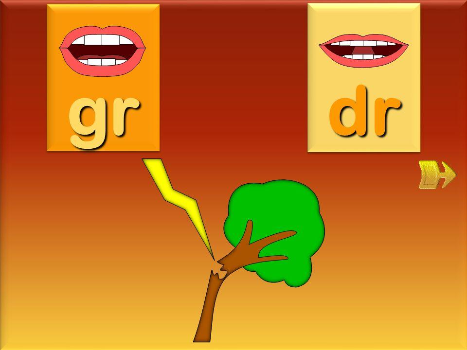 gr dr foudre