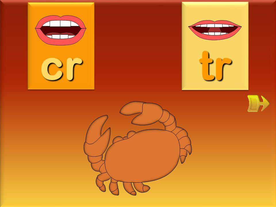 cr tr crabe