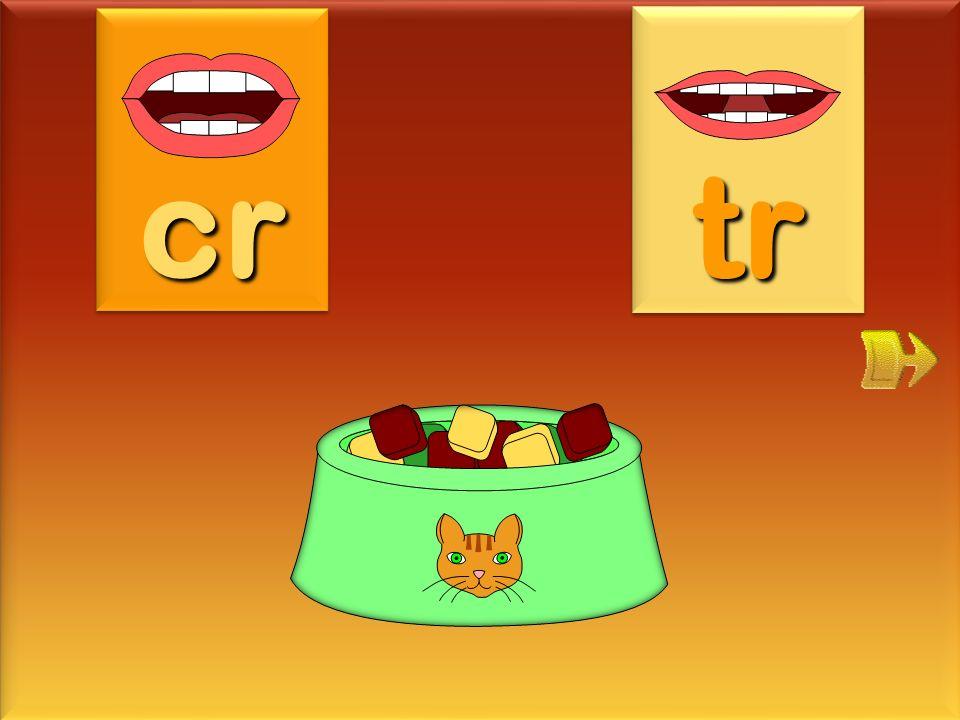 cr tr croquette