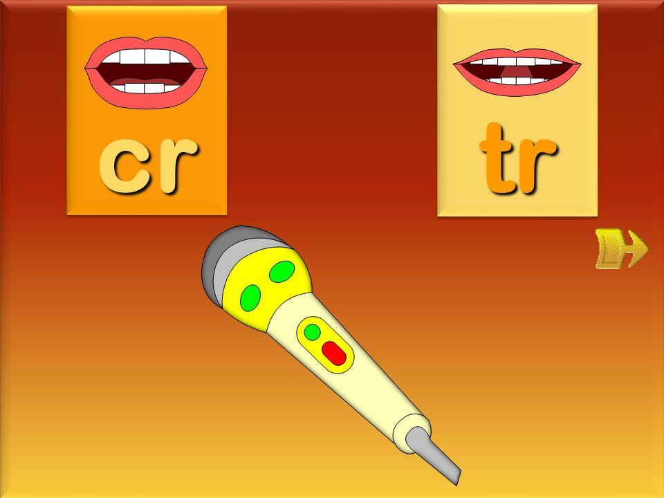 cr tr micro