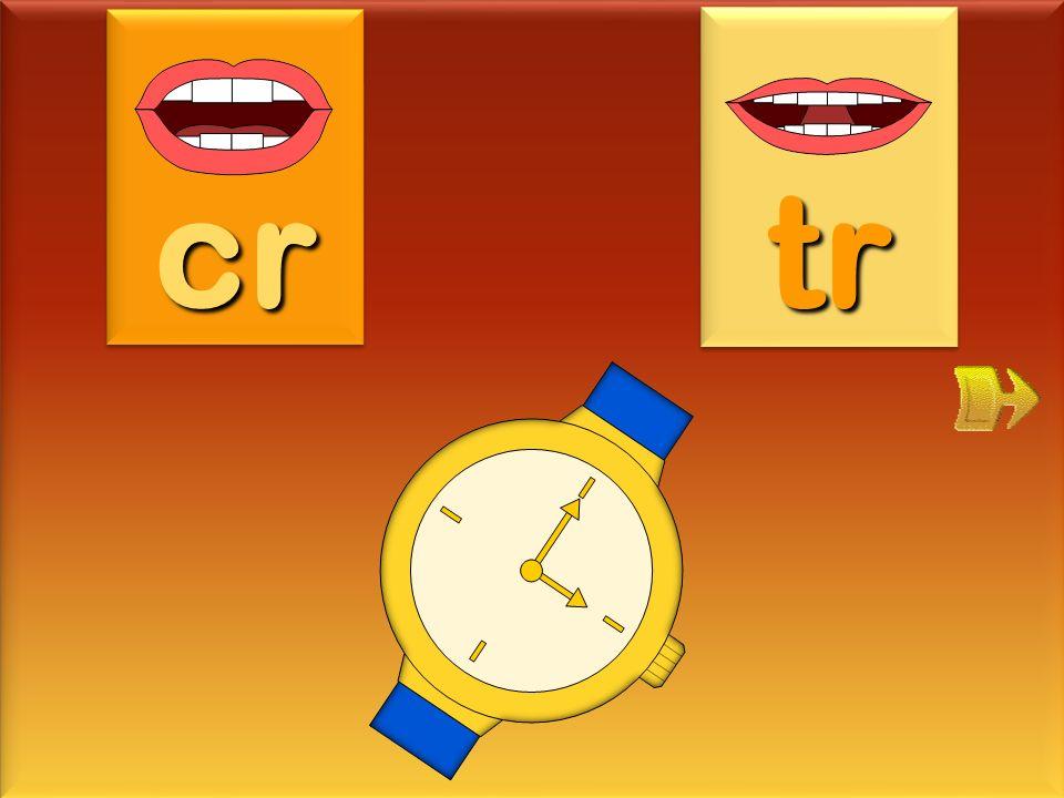 cr tr montre