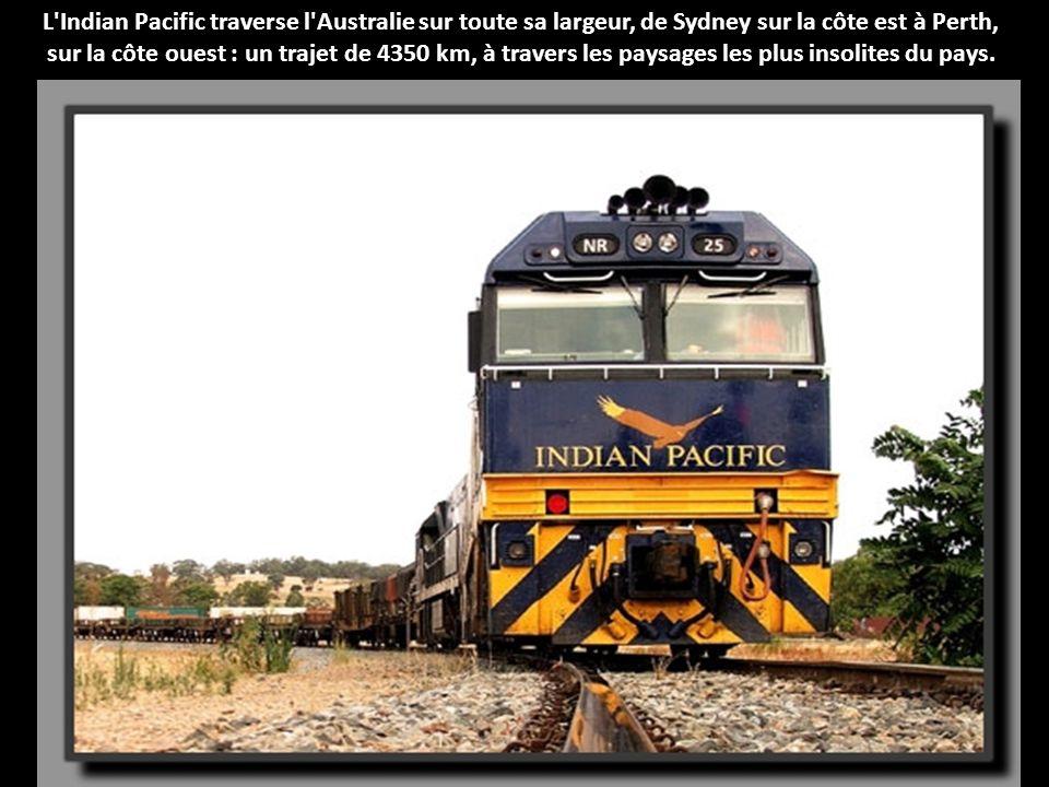 L Indian Pacific traverse l Australie sur toute sa largeur, de Sydney sur la côte est à Perth, sur la côte ouest : un trajet de 4350 km, à travers les paysages les plus insolites du pays.