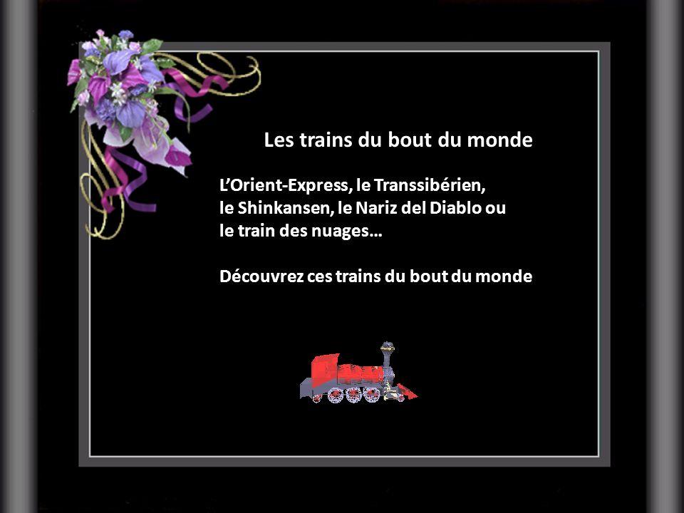 Les trains du bout du monde
