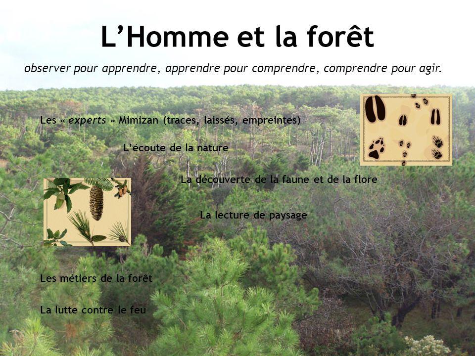 La découverte de la faune et de la flore