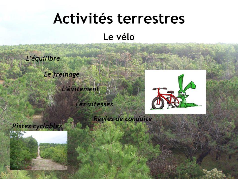Activités terrestres Le vélo L'équilibre Le freinage L'évitement
