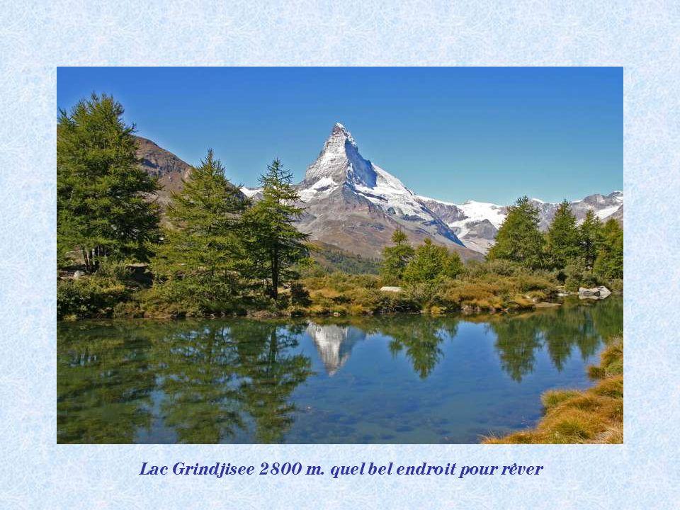 Lac Grindjisee 2800 m. quel bel endroit pour rêver