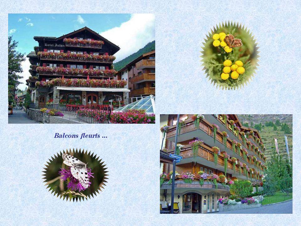 Balcons fleuris ...