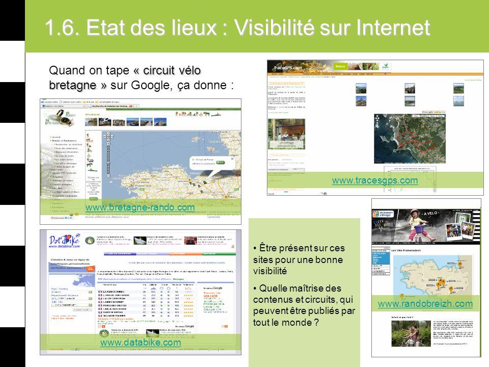 1.6. Etat des lieux : Visibilité sur Internet