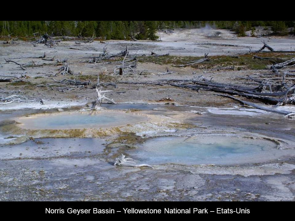 Norris Geyser Bassin – Yellowstone National Park – Etats-Unis