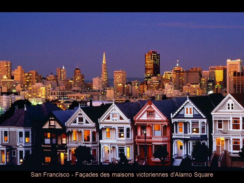 San Francisco - Façades des maisons victoriennes d Alamo Square