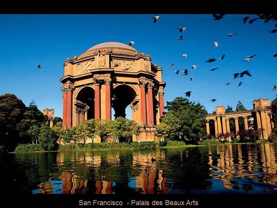 San Francisco - Palais des Beaux Arts