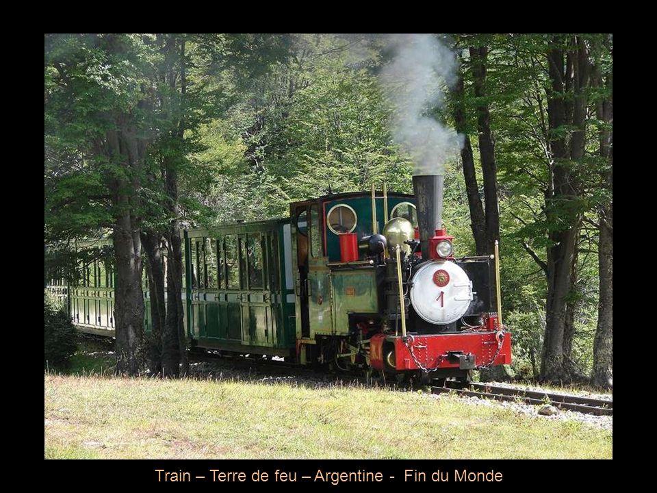 Train – Terre de feu – Argentine - Fin du Monde