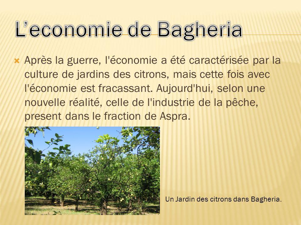 L'economie de Bagheria