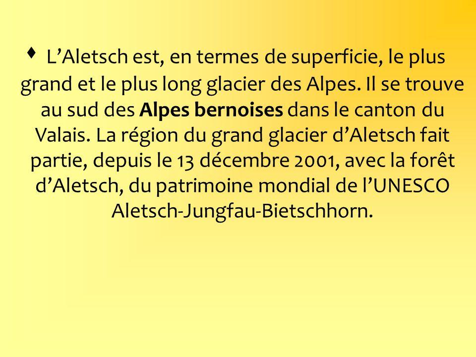 L'Aletsch est, en termes de superficie, le plus grand et le plus long glacier des Alpes.