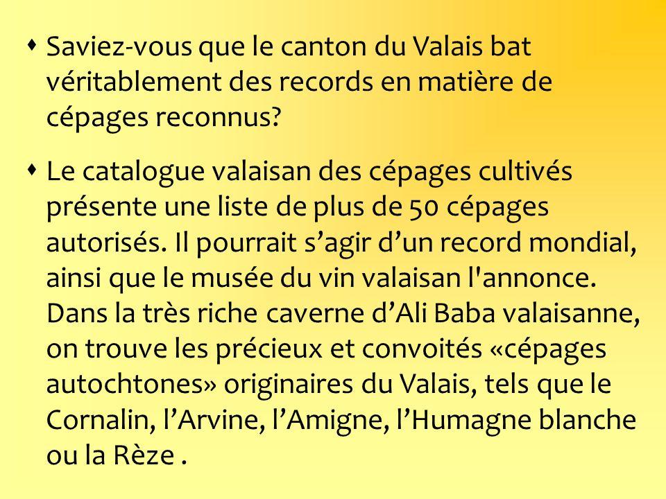 Saviez-vous que le canton du Valais bat véritablement des records en matière de cépages reconnus