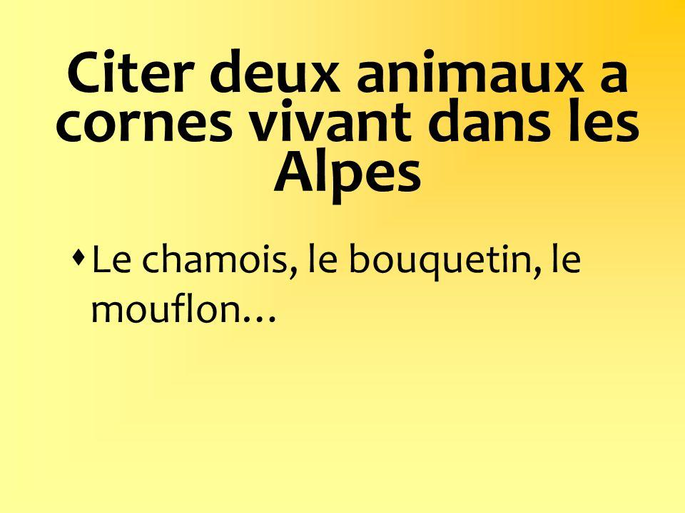 Citer deux animaux a cornes vivant dans les Alpes