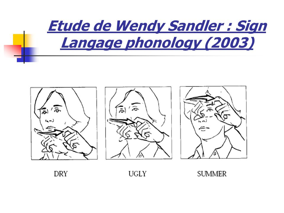 Etude de Wendy Sandler : Sign Langage phonology (2003)