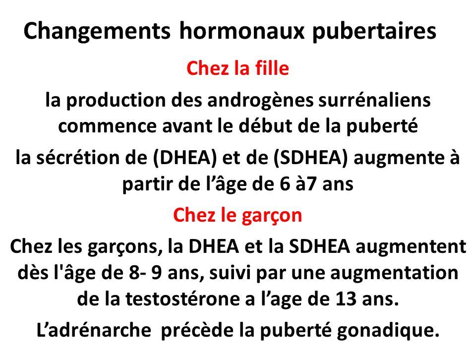 Changements hormonaux pubertaires