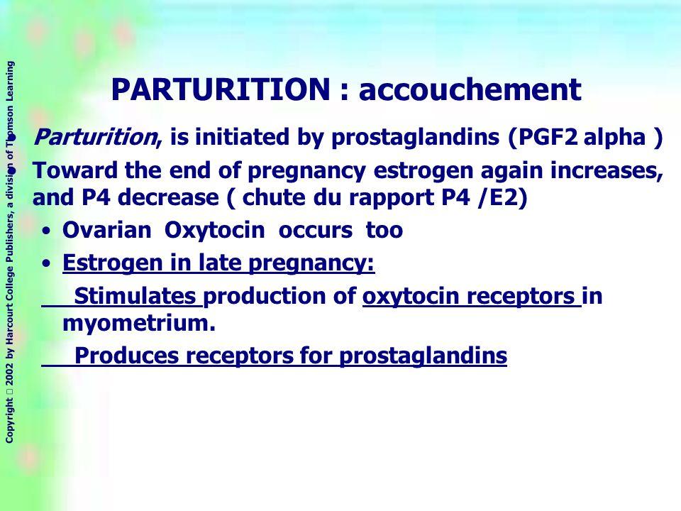 PARTURITION : accouchement