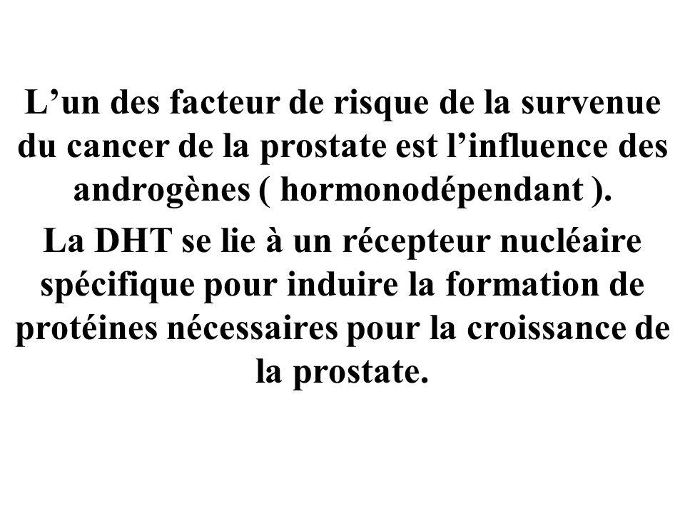 L'un des facteur de risque de la survenue du cancer de la prostate est l'influence des androgènes ( hormonodépendant ).